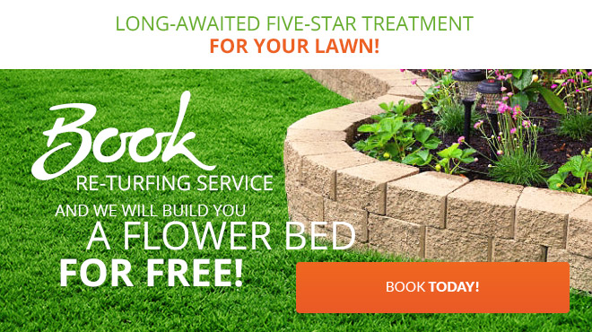 Big Discounts on Gardening Services