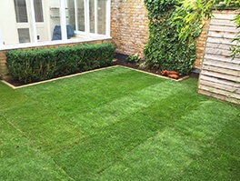 severnake lawn turfing after