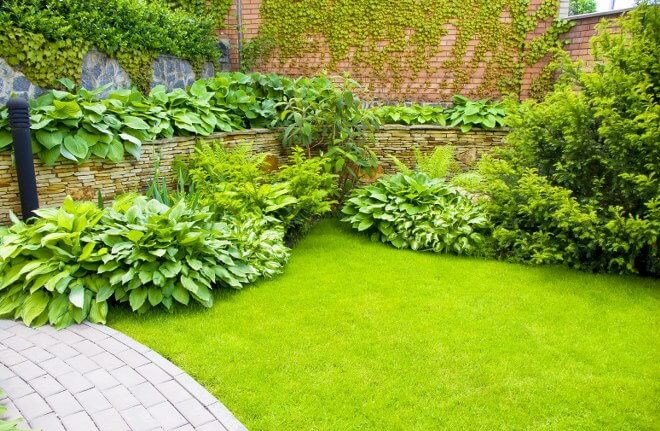 Keeping Your Lawn and Garden Clear