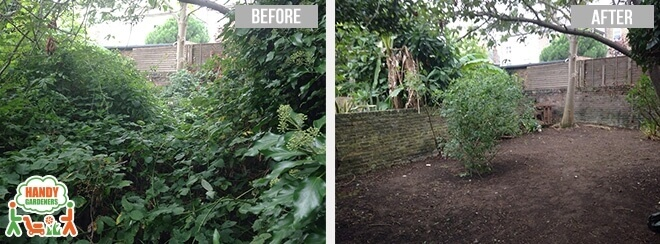 Landscaping in West Ham E13