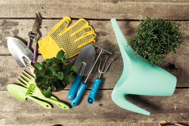Six Gardening Tools You Will Need Next Summer