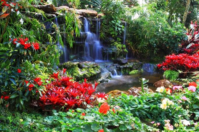 Adding a Beautiful Waterfall for a Peaceful Backyard