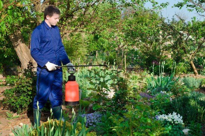 gardening company