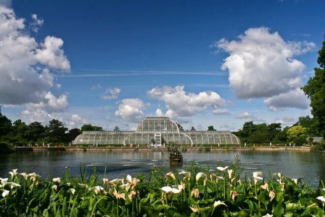 the Kew Gardens