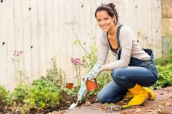 Hire a Gardener in East London
