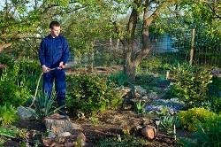 London Landscape Gardeners