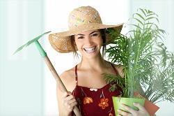 London Handy Gardeners