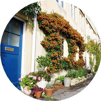 Selsdon Lawn Treatment Service in CR2