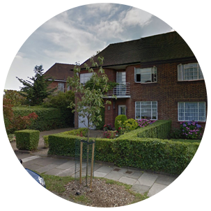Hampstead Garden Suburb Tree Care N2