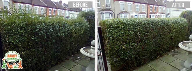 Lawn Care in Bethnal Green