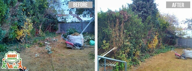 Gardening Services in Catford
