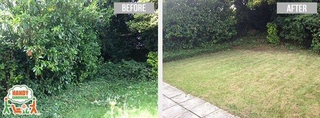NW2 Lawn Care in Childs Hill