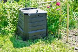 Composting: How to Get Started