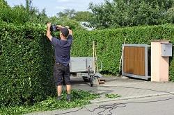 DIY Gardening vs. Gardening Professionals