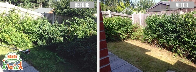 Landscaping Services in Gunnersbury