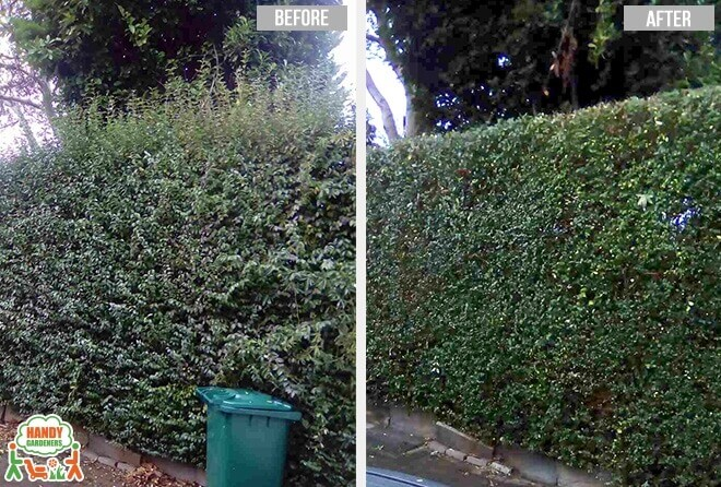 Landscaping Services in Nunhead