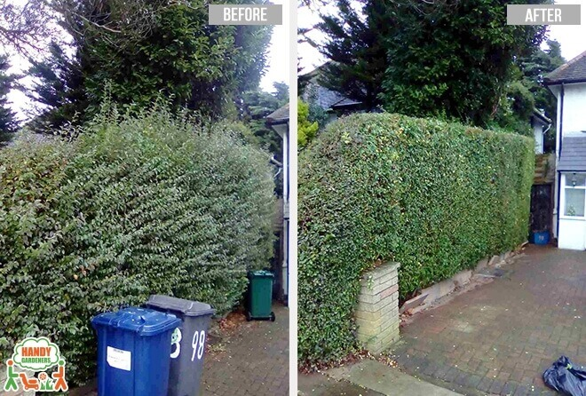 N15 Landscaping Services in Seven Sisters