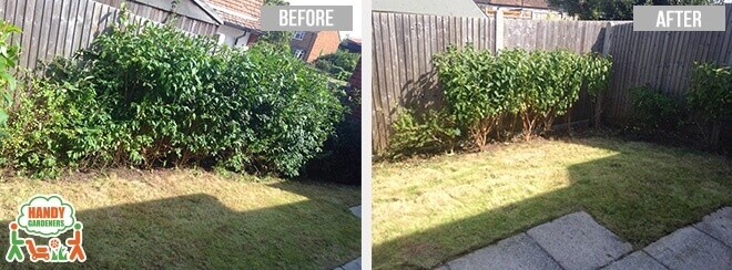 E16 Lawn Care in Silvertown