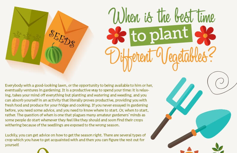 When Is the Best Time to Plant Different Vegetables?