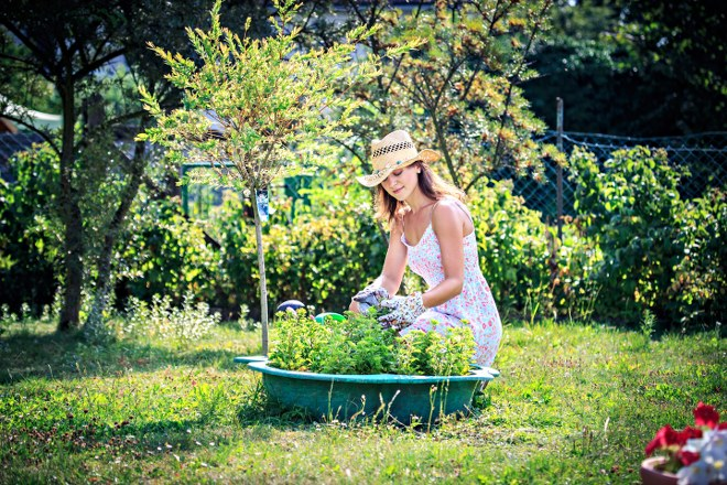 London garden care